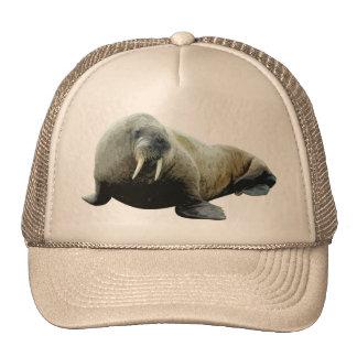 Gorra de la morsa