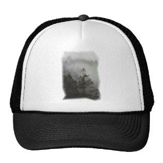 Gorra de la neblina de la secoya