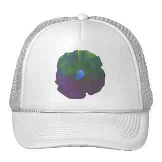 Gorra de la petunia del arco iris