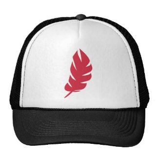 Gorra de la pluma