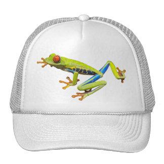 Gorra de la rana arbórea