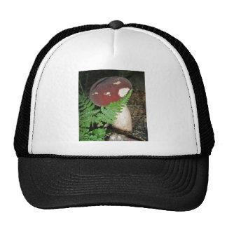 Gorra de la seta del terciopelo