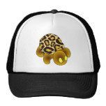 Gorra de la tortuga del leopardo