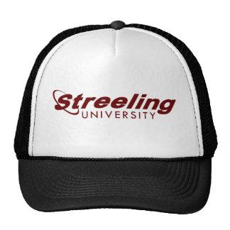 Gorra de la UNIVERSIDAD de STREELING