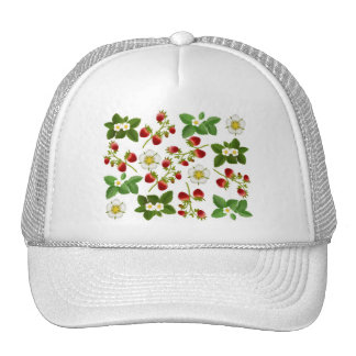 Gorra de las fresas salvajes