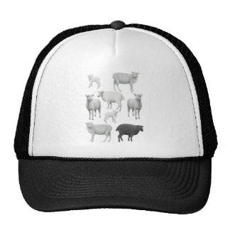 Gorra de las ovejas negras