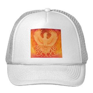 Gorra de levantamiento de Phoenix