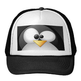 Gorra de Linux