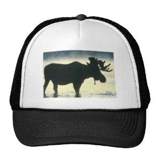 Gorra de los alces de Bull