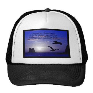 gorra de los azules del pájaro del doble del rezo