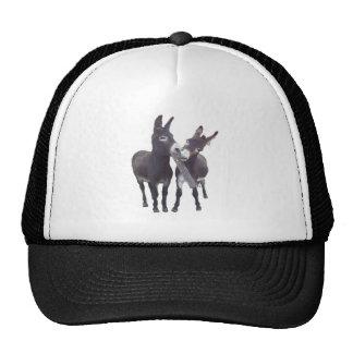 """""""Gorra de los burros de Missy"""""""
