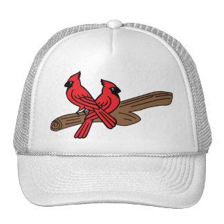 Gorra de los cardenales