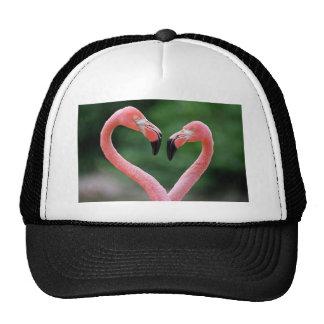 Gorra de los flamencos