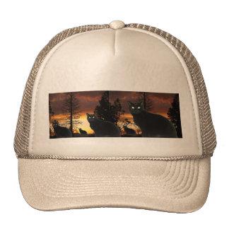 Gorra de los gatos de la puesta del sol