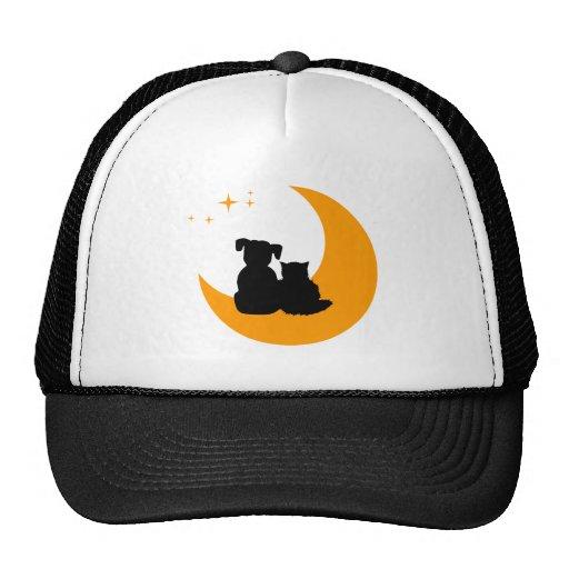 Gorra de los mascotas del gato y del perro