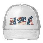 Gorra de los osos de peluche de los E.E.U.U.