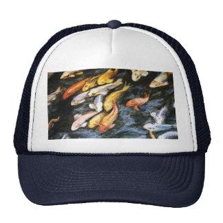 Gorra de los pescados de Koi