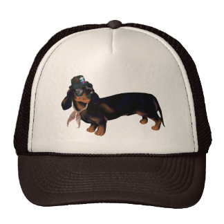 Gorra de lujo del Dachshund