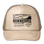 Gorra de Minnesota