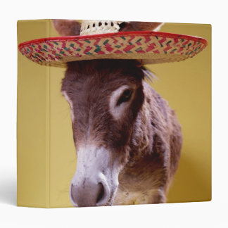 Gorra de paja del burro que lleva (hemonius del Eq