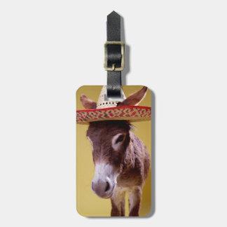 Gorra de paja del burro que lleva (hemonius del Eq Etiqueta Para Equipaje