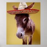 Gorra de paja del burro que lleva (hemonius del Eq Posters