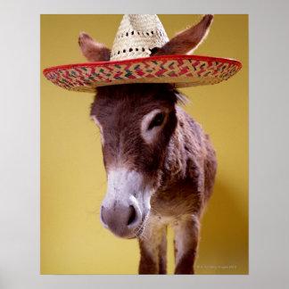 Gorra de paja del burro que lleva (hemonius del póster