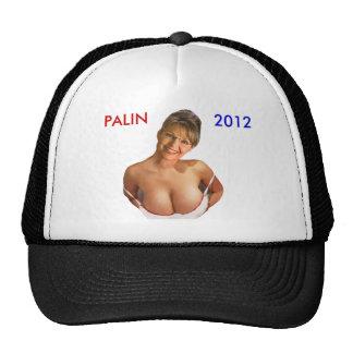 Gorra de Palin 2012 (camisetas de Palin, imán, per