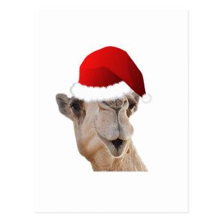 Gorra de Papá Noel del camello del día de chepa Tarjetas Postales