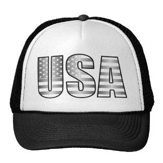 Gorra de plata de la bandera de los E.E.U.U.