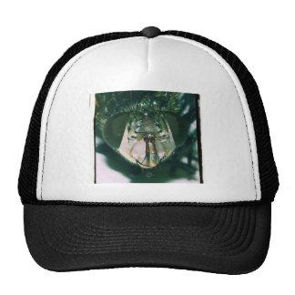 Gorra de proceso cruzado de la cara del tábano por