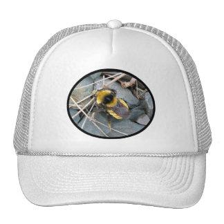 Gorra de reclinación de la abeja