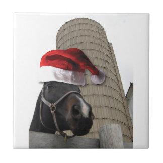 Gorra de Santa de caballo Tejas Cerámicas