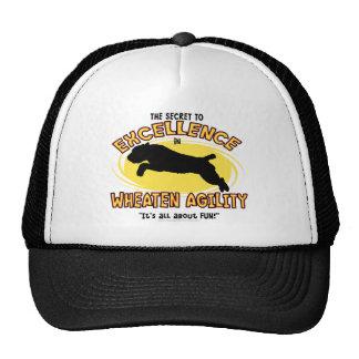 Gorra de trigo del secreto de Terrier de la agilid