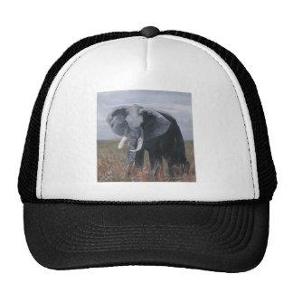 """Gorra """"de un elefante de granuja"""""""
