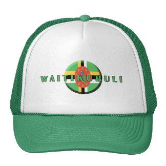 Gorra de Waitikubuli