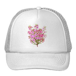 Gorra de Waxflowers