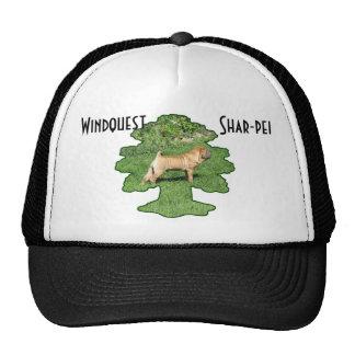 Gorra de Windquest Shar-pei
