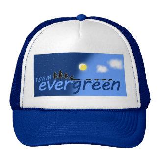 Gorra del árbol de hoja perenne del equipo