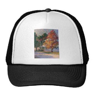 Gorra del arce y de las palmeras