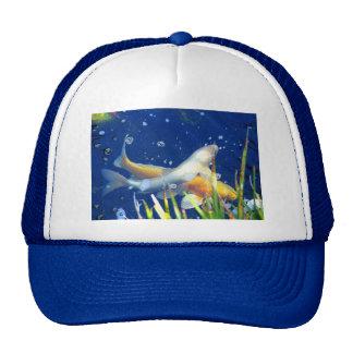 gorra del azul de la charca del koi