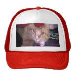 Gorra del bajo del M-Gato de Jazzpurr