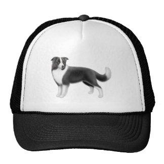 Gorra del border collie
