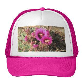 Gorra del cactus de barril de la lengua del diablo