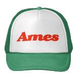 Gorra del camionero de Ames