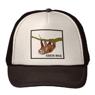 Gorra del camionero de Brown del recuerdo de la pe