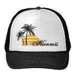 Gorra del camionero de Hawaii