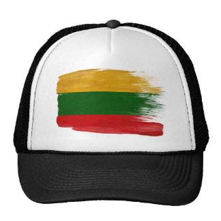 Gorra del camionero de la bandera de Lituania