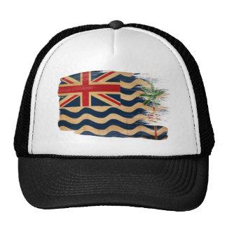 Gorra del camionero de la bandera de los territori