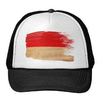 Gorra del camionero de la bandera de Mónaco